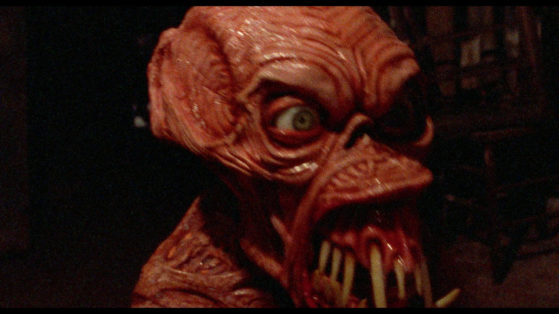Wayne Wright – Horror Headquarters